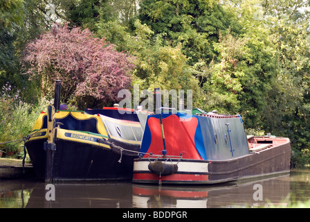 Moored traditional historic narrowboats at Cropredy on the South Oxford Canal © Doug Blane - Stock Photo