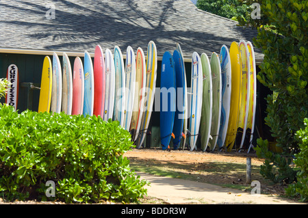 Stacked Surfboards Stock Photo: 47490068 - Alamy