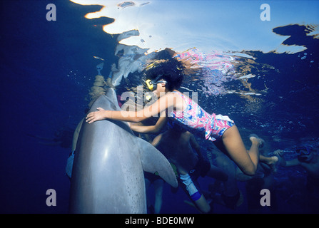 Children snorkeling with wild Bottlenose Dolphin (Tursiops truncatus). - Stock Photo