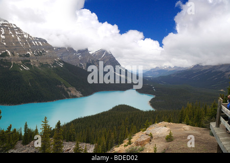 Peyto lake a fox head shaped lake in banff national park for L shaped lake