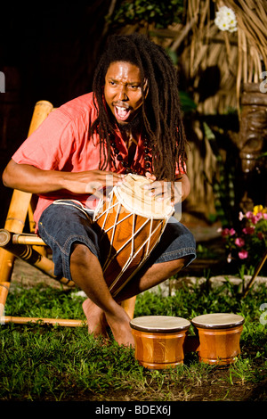 Young Jamaican man with dreadlocks playing bongos on tropical island - Stock Photo
