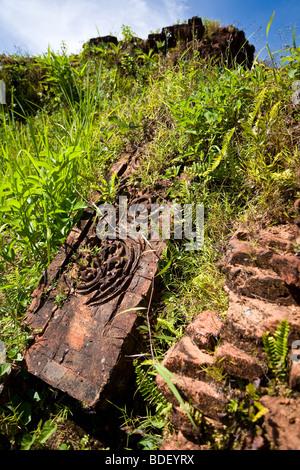 A carved door panel lies in the long grass near broken bricks at My Son, Vietnam - Stock Photo
