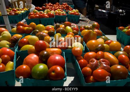 union square greenmarket vendor application