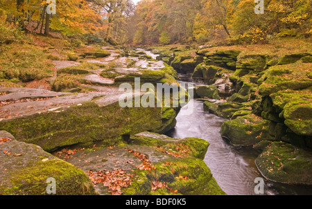 River Wharfe Bolton Abbey Yorkshire England - Stock Photo