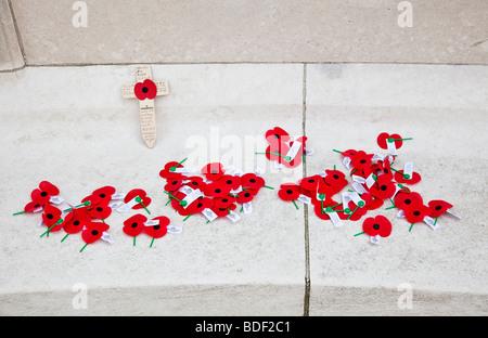 RSA New Zealand poppies at Tyne Cot WW1 Commonwealth military cemetery Passchendaele Flanders Belgium Europe - Stock Photo