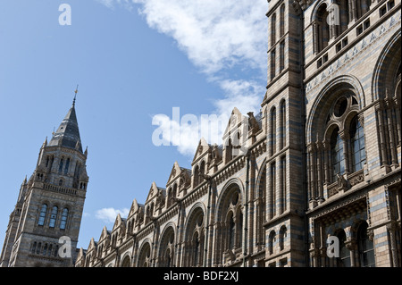 Section of the architectural stone detailing on the external facade of The Natural History Museum, London against - Stock Photo