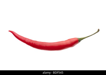 Large red Chilli studio shot against white background including clipping path - Stock Photo