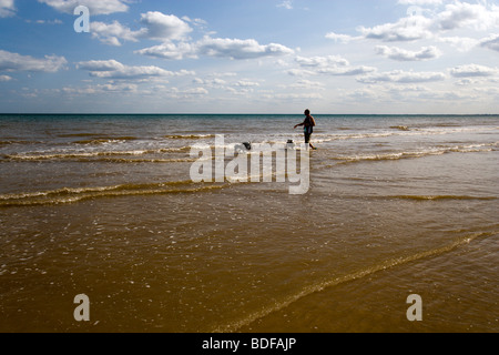 A man taking his two dalmatian dogs for a walk in the surf on Bridlington's North Beach. - Stock Photo