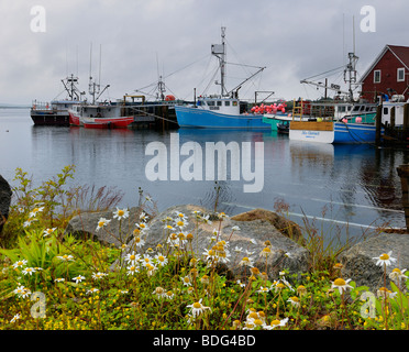 Fishing boats and wildflowers in the rain at Johns Cove or Yarmouth Bar Nova Scotia - Stock Photo
