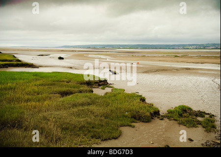 Low tide exposing the mudflats of the Llanrhidian sands on the Loughor estuary, south  west wales UK, overcast grey - Stock Photo