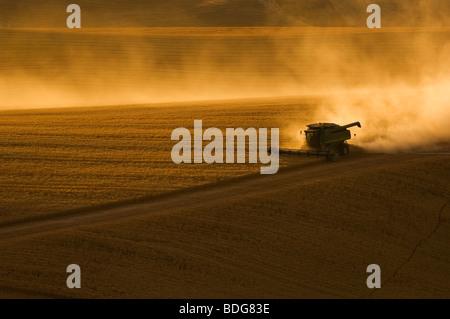 A John Deere combine harvests wheat on rolling hillside terrain at sunset / Palouse Region, near Pullman, Washington, - Stock Photo
