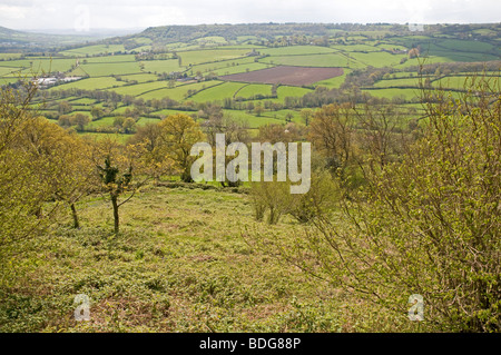 Looking west across the rolling east Devon countryside from Dumpdon Hill, near Honiton - Stock Photo