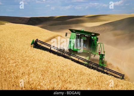 A John Deere combine harvests Soft White wheat on rolling hillside terrain / Palouse Region, near Pullman, Washington, - Stock Photo