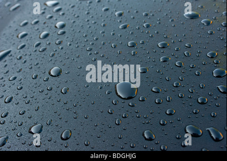 Droplets of water on a tinted car sunroof - Stock Photo