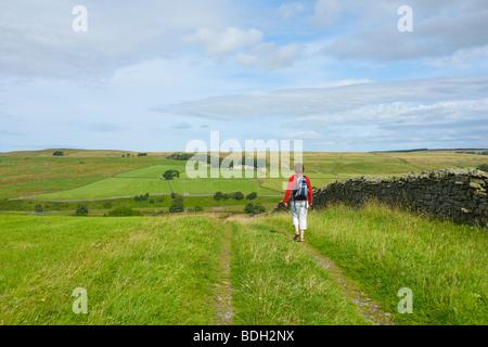 Female walker in Baldersdale, County Durham, England UK - Stock Photo