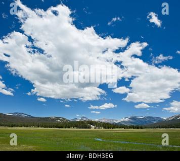 Tuolumne meadows in summer, Yosemite national park, California - Stock Photo