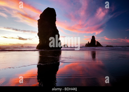 Low tide and sunset reflection at Samuel H. Boardman State Scenic Corridor. Oregon Stock Photo