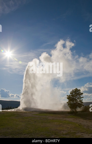 Old Faithful Geyser erupting in Upper Geyser Basin in Yellowstone National Park Wyoming USA - Stock Photo