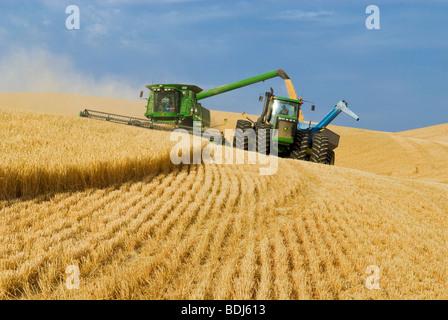 A John Deere combine harvests barley on steep hillside terrain and unloads the harvested barley into a grain cart - Stock Photo