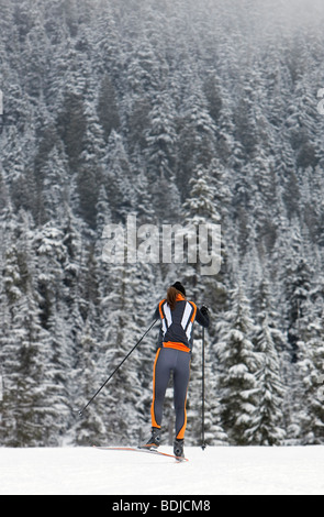 Backview of Woman Cross Country Skiing, Whistler, British Columbia, Canada - Stock Photo