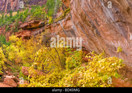 Fall color and cascade at the lower Emerald Pools, Zion National Park, Utah - Stock Photo