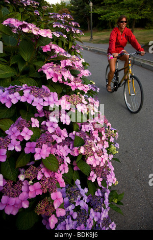 Bike riding on the coastal trail along Stanley Park, Vancouver, British Columbia, Canada. (model released) - Stock Photo
