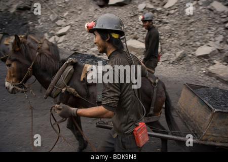 WUDA COAL FIELD, WU HAI, INNER MONGOLIA, CHINA - AUGUST 2007: Miners at an illegal private mine use mules to haul - Stock Photo
