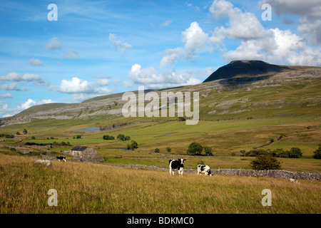 Ingleborough looking over the Doe valley from Twistleton in the Yorkshire Dales England UK - Stock Photo