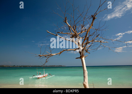 Indonesia, Lombok, Gili Air, white and blue painted outrigger boat moored in idyllic aquamarine sea - Stock Photo