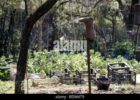 one dirty wellington boot in allotment patch garden in country - Stock Photo