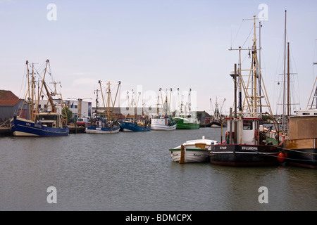 Fishing cutters in the harbor of Buesum, Dithmarschen district, Schleswig-Holstein, North Sea, Wadden Sea, Germany, - Stock Photo