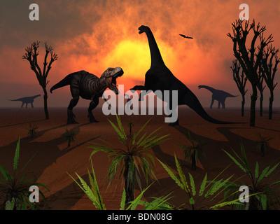A Tyrannosaurus Rex Dinosaur , encountering a herd of Camarasaurus Dinosaurs - Stock Photo