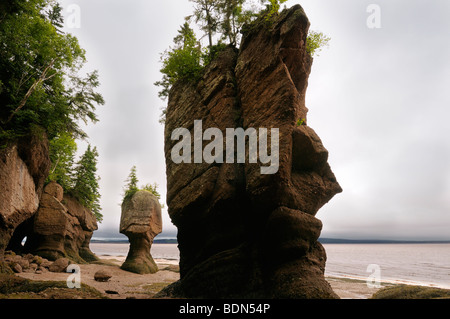 Face of ET and Motherinlaw sea stacks at Hopewell Rocks Bay of Fundy New Brunswick Canada - Stock Photo