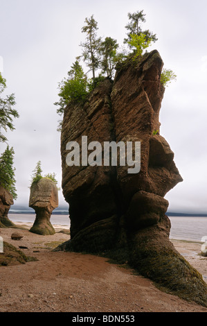 Face of ET and Motherinlaw flowerpot sea stacks at Hopewell Rocks Bay of Fundy New Brunswick on cloudy day - Stock Photo