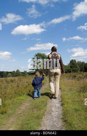 Walk on the heath, mother and son, 2 years, walking hand in hand, Lueneburger Heide, Lueneburg Heath, Lower Saxony, - Stock Photo