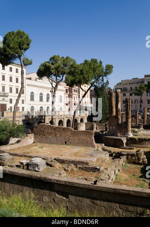 Area Sacra di Largo Argentina, Rome, Lazio, Italy, Europe - Stock Photo
