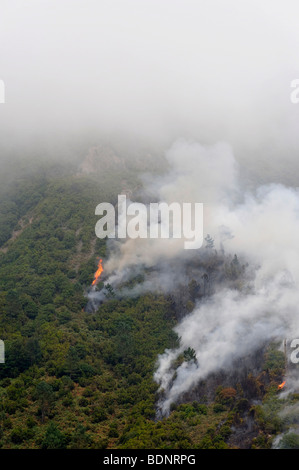 Forest fire in Parque Natural de Madeira, Portugal, Europe - Stock Photo