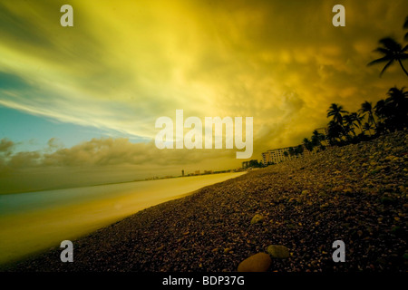 A beach scene with yellow sky and palm trees - Stock Photo