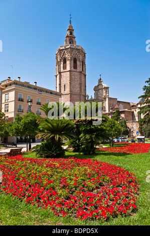 A flower bed in the Plaza de la Reina, Valencia - Stock Photo