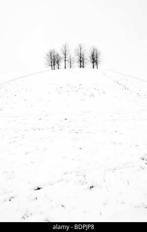 Black and white rural scene of snow covered small hill with trees on taken from Cotswold Way near Old Sodbury , - Stock Photo
