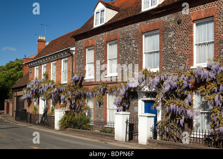 England, Berkshire, Cookham, Sutton Road, Wistaria Cottage, Wisteria hung front of Eastgate John Lewis building - Stock Photo