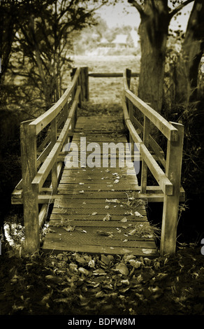 The wooden bridge crosses a stream in Thornham woods, Suffolk, England. - Stock Photo