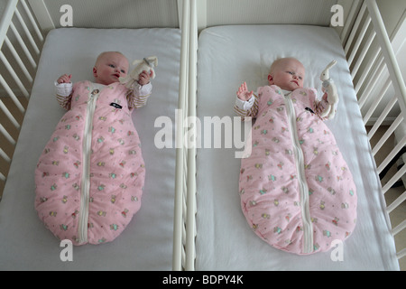 Parents with twins, 6 month old. - Stock Photo