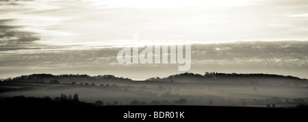 A distant view of trees over a valley with mist in the early morning - Stock Photo