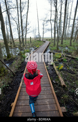 A little girl walking in a forest Sweden. - Stock Photo