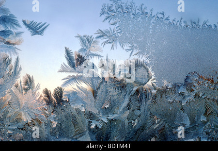 Ice flowers on a frozen window glass, nobody. - Stock Photo