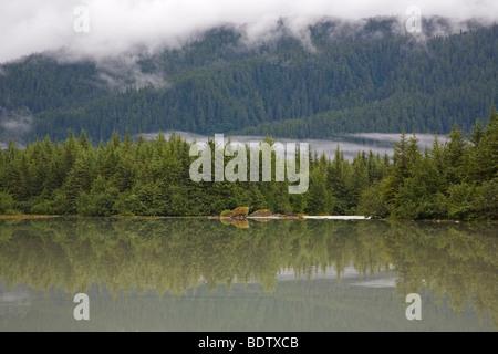 Mendenhall-See / Mendenhall-Lake / Juneau - Alaska - Stock Photo