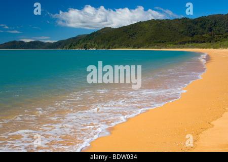 Golden beach of Totaranui and the blue ocean, Tasman District, South Island, New Zealand - Stock Photo