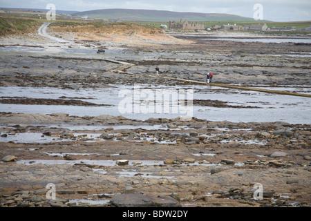 ebbe auf mainland, hauptinsel der orkney-inseln, low tide on mainland, mainland, orkney islands, scotland - Stock Photo