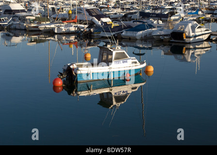 A small fishing boat moored in torquay marina - Stock Photo